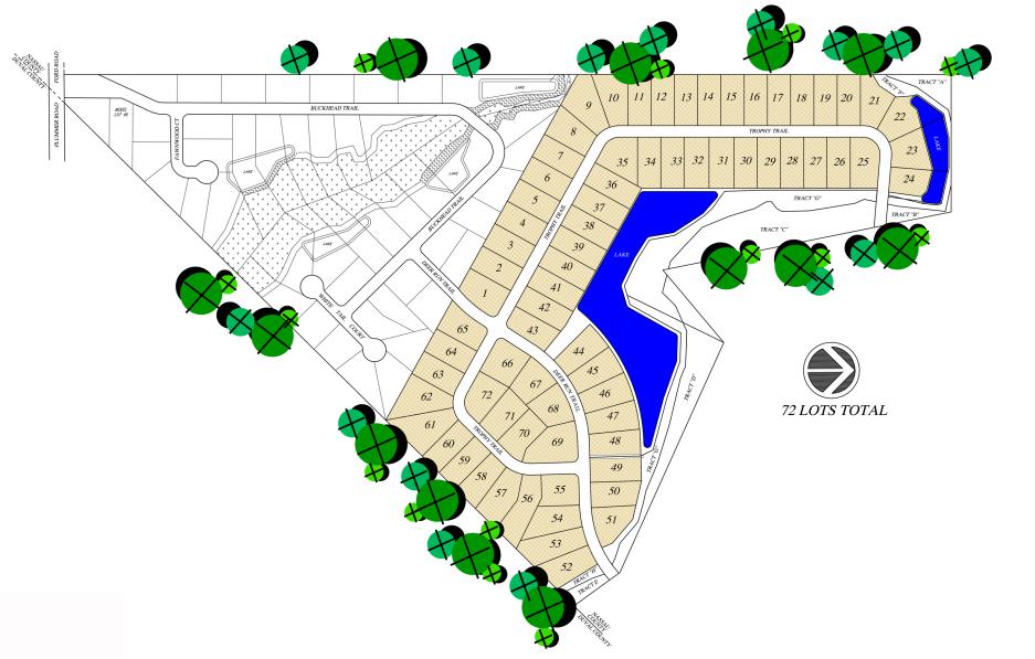 Buckhead site plan